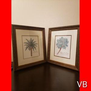 Decorative Framed Palm Tree Artwork Set of 2.
